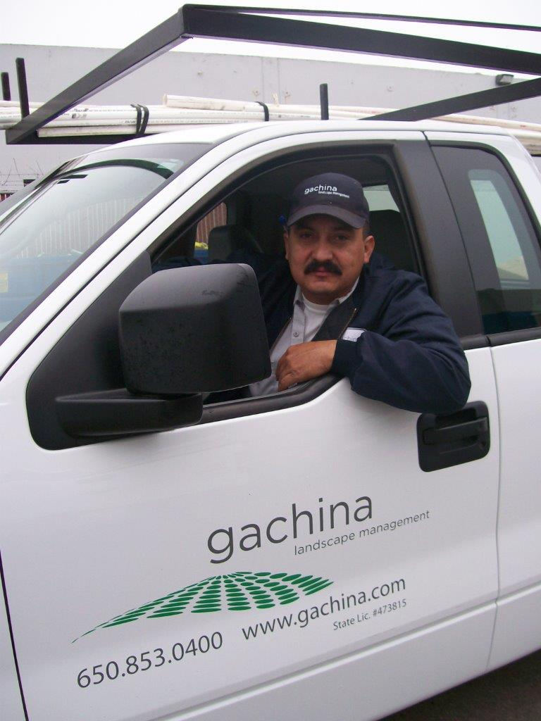 gachina landscaping vehicles team