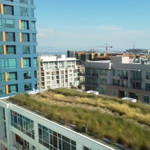 green roof on industrial building bay area