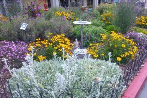sustainable landscaping solutions