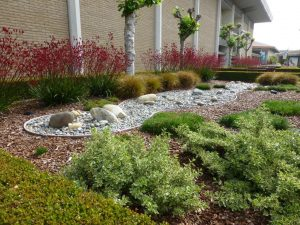commercial landscaping, sustainable landscaping