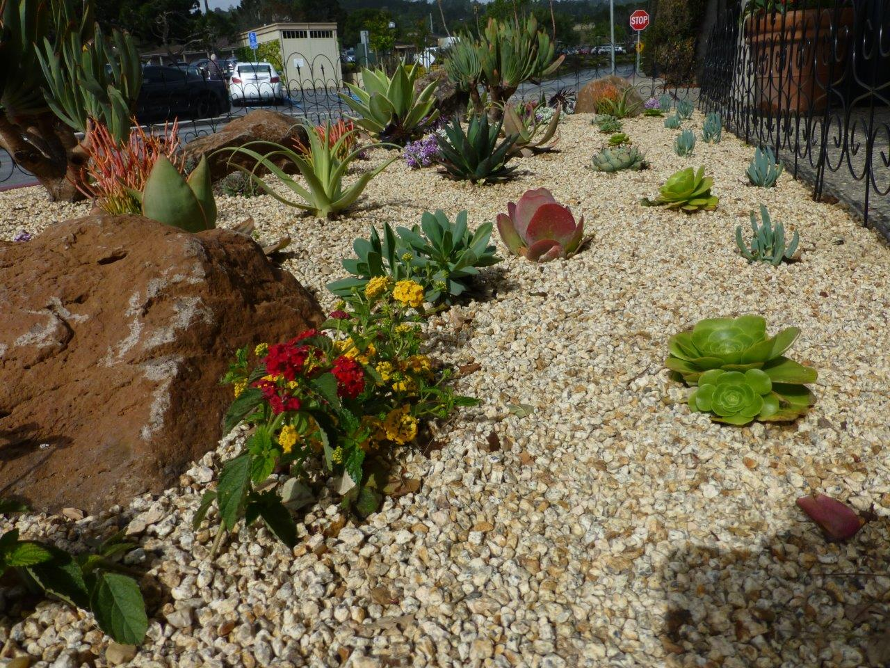 Sustainable Landscape Maintenance Solutions Palo Alto, Menlo Park, CA