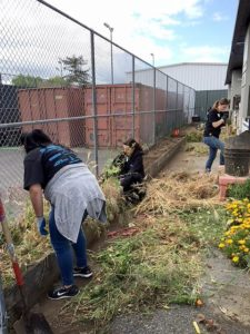 Gachina community outreach with IFMA SV clearing gardens for Earth Day